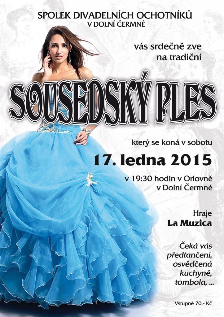 Sousedsky-ples-2015