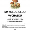Myk_plak